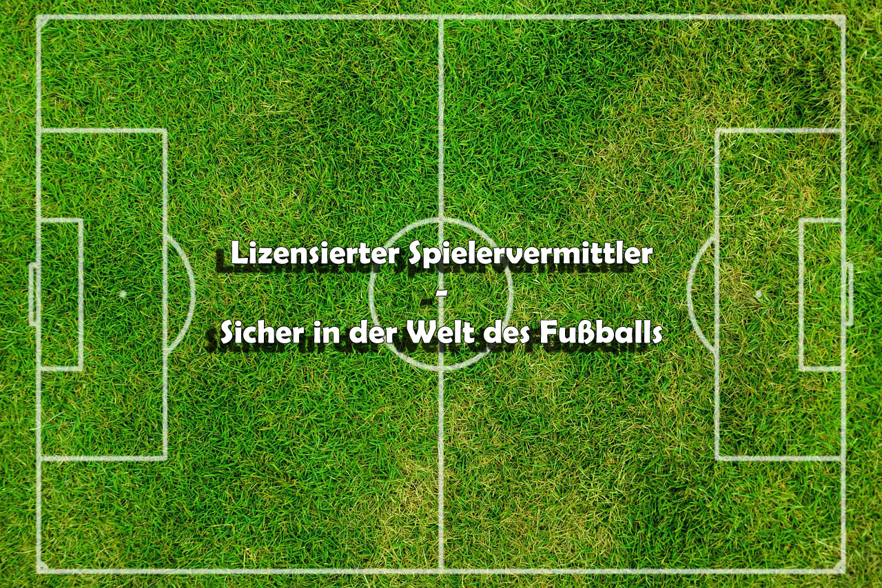 football-pitch-320100_1280_labeled